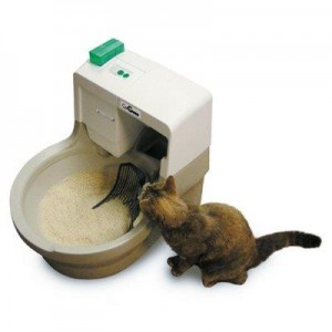 котешката тоалетна