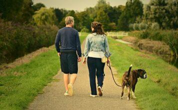 разхождане на кучето